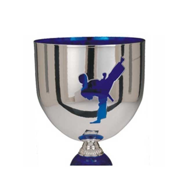Karate Cup Trophy EC-1544-40-Z