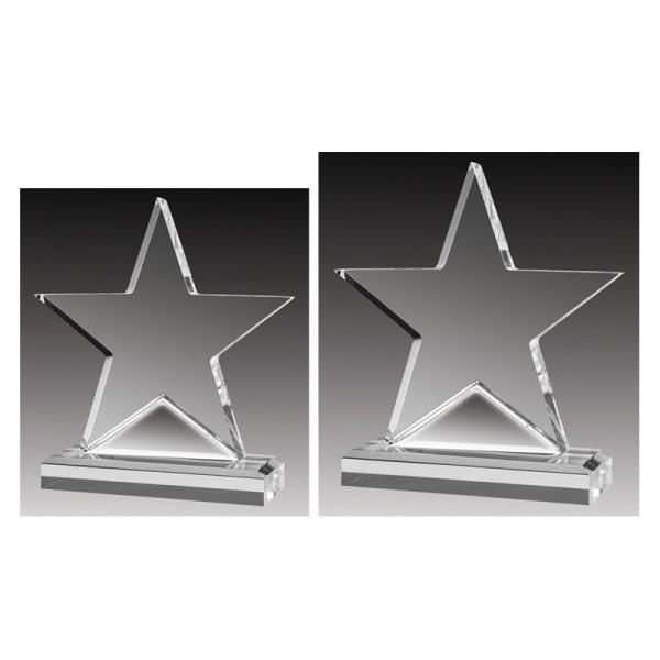 Trophée Acrylique ACC355C