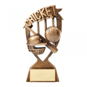 Trophée Cricket RFS250