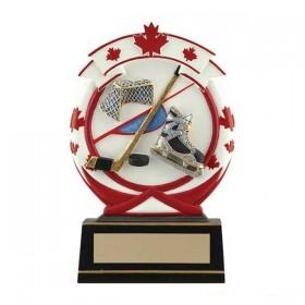 Trophée Résine Hockey RS41063FC