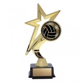 Volleyball Trophy THS-5317G