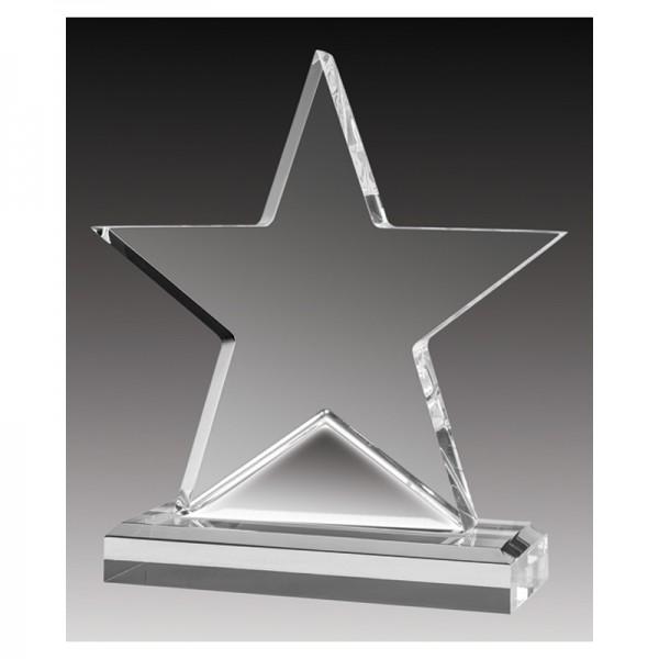 Trophée Acrylique ACC355B