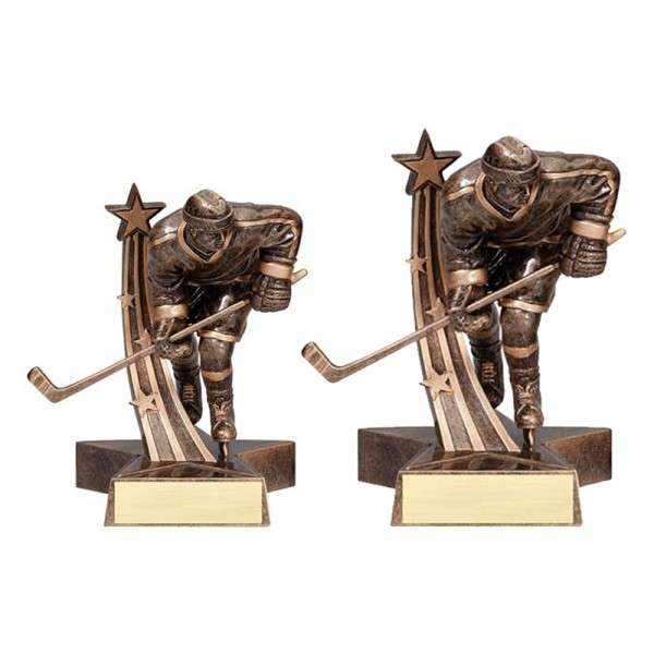 Trophée Hockey Masculin RST513