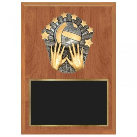 Volleyball Plaque 1183-XPC17