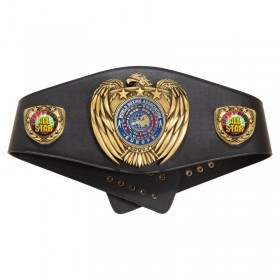 Champion Belt BELT01-INSERT