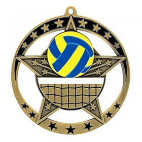 Volleyball Gold Medal 2 3/4 in MSE639G