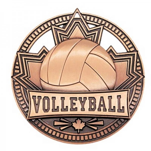 Volleyball Bronze Medal 2 3/4 in MSN517Z
