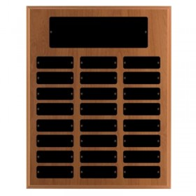 Annual Plaque / 24 plates PAP48483K