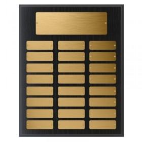 Annual Plaque / 24 plates PAP48432G
