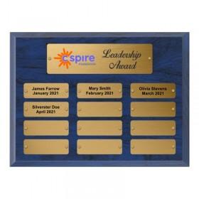 Plaque Annuelle / 12 plaquettes PAP42267G