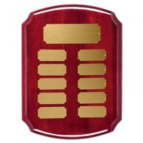 Plaque Annuelle / 10 plaquettes PAP3700G