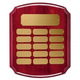 Plaque Annuelle / 15 plaquettes PAP3700W