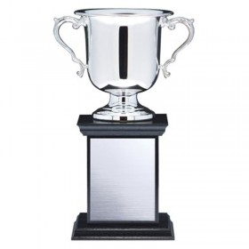 Silver Plated Cup MBT4680