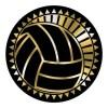 Volleyball Insert TRF-3810G