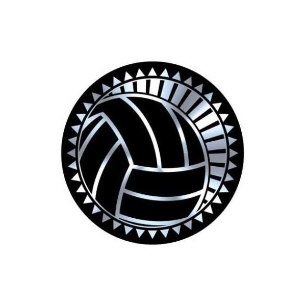 Volleyball Insert TRF-3810S