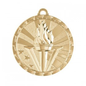 Victory Medal 2 in GM-290G