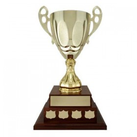 Annual Cup T18-89100