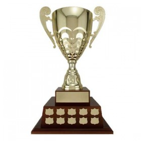 Annual Cup T18-89200