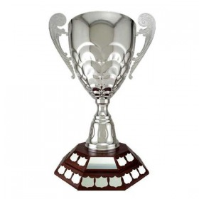 Annual Cup T18-89500
