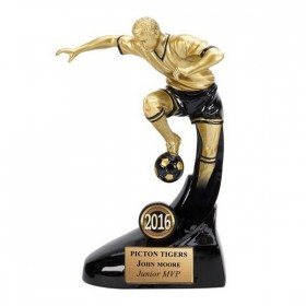 Soccer Trophy A1344A