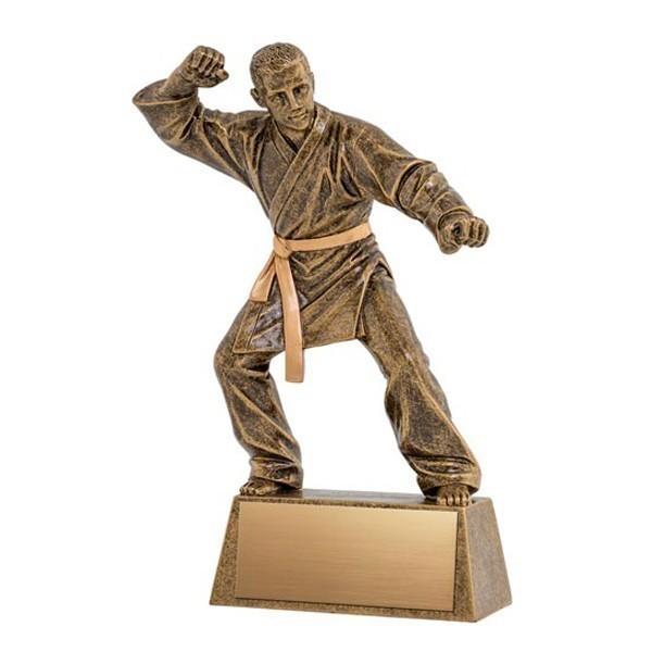 Martial Arts Trophy A1385C