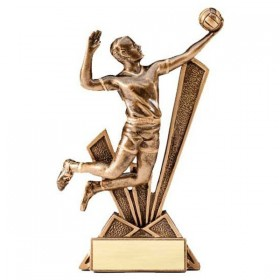 Men's Volleyball Award RF1924