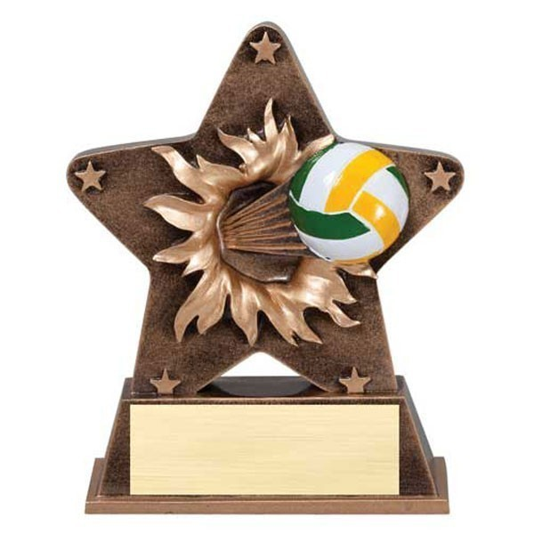 Volleyball Resin Award RS25