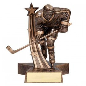 Trophée Hockey Masculin RST313