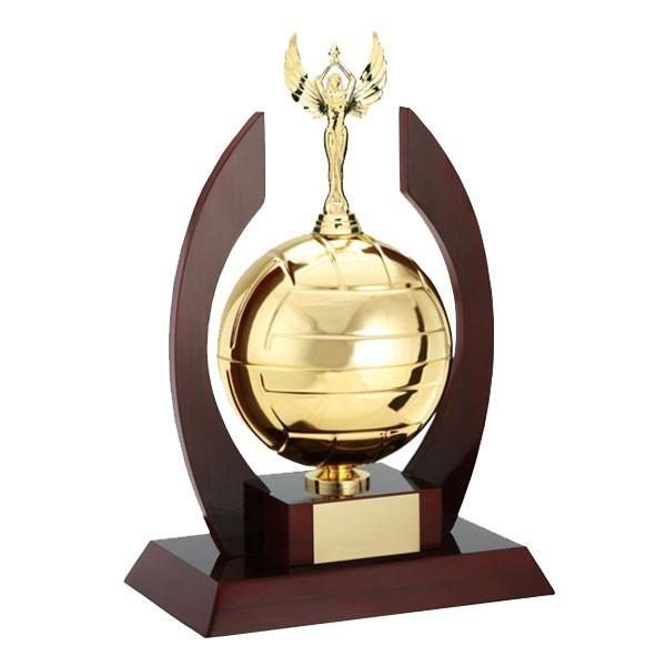 Volleyball Trophy EC-1437-30