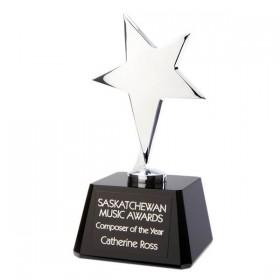 Corporate Awards DA9397