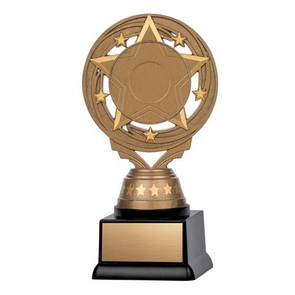 Trophée Insertion TFPX1080AZ