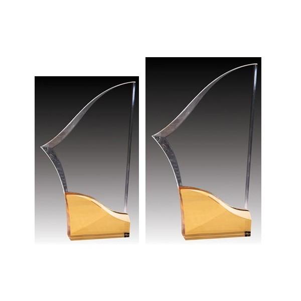 Trophée Acrylique ACG645C-G