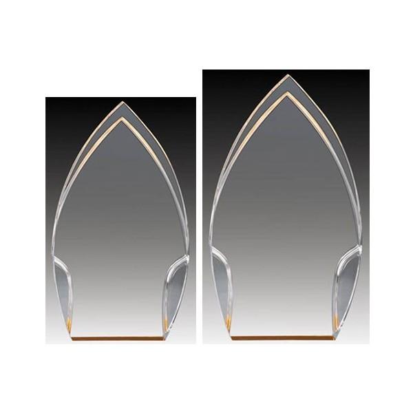 Trophée Acrylique ACG784C-G