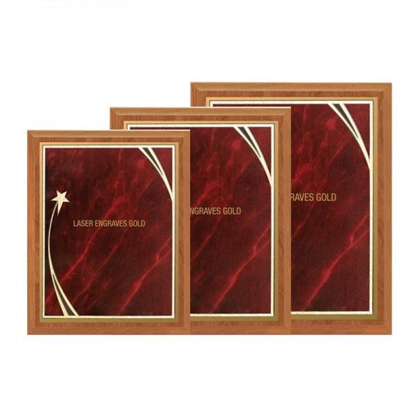 Recognition Plaques PLV562-RM-2