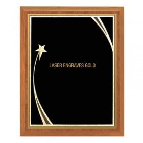 Recognition Plaques PLV562-BK