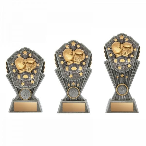 Trophée Boxe XRCS5031